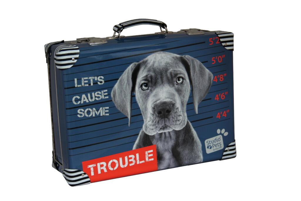 Kufřík Pes Trouble 40cm /7629196-2600/