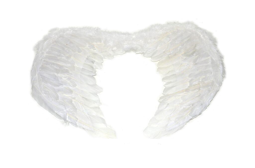 Křídla ANDĚL ( 880279 )