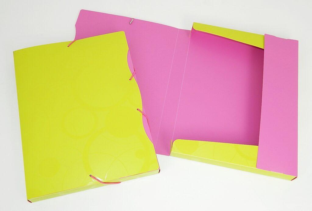 Krabice na spisy A4 PP, zeleno-růžová /2-523/